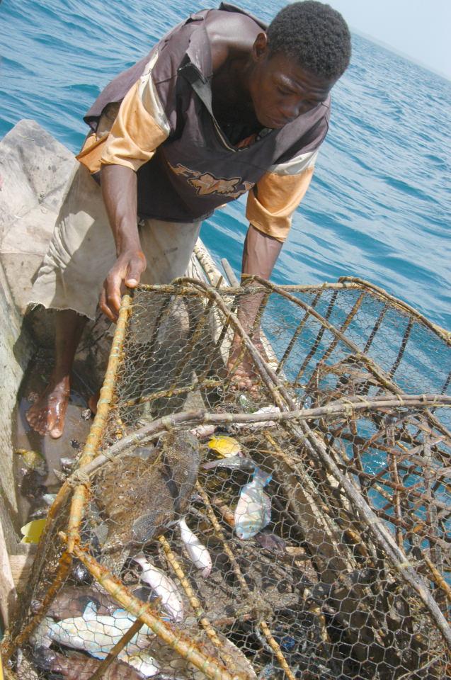 купить вентерь для рыбалки в интернет магазине